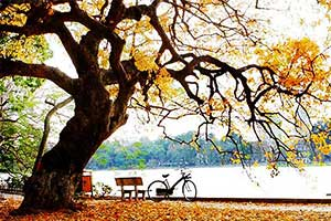 Autumn - The Best Time to Visit Hanoi